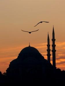 """osmanli - Photo par Tolga """"Musato"""""""